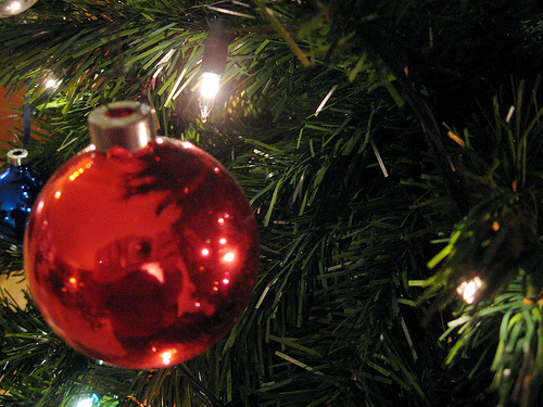holidays photo