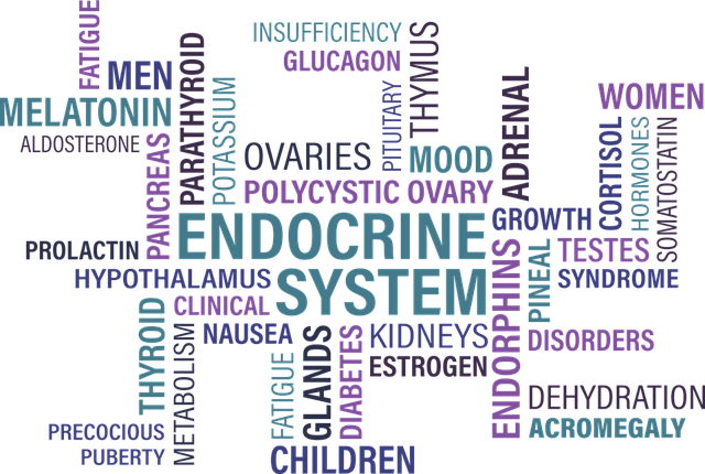 word tag on endocrine system